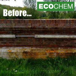 ECOCHEM Black Spot Remover 5L